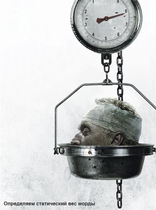 Как определить статический вес морды?